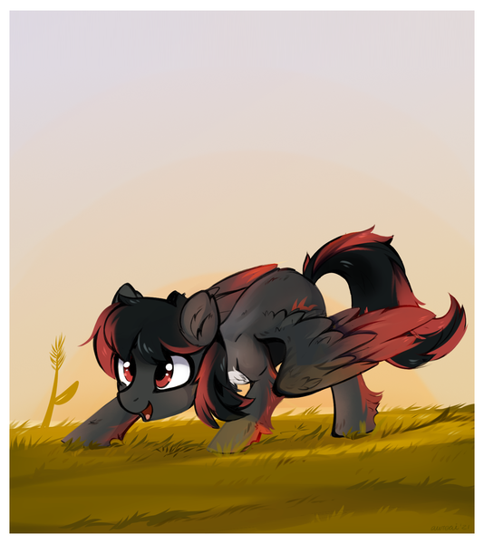 Size: 1432x1610 | Tagged: artist:aureai, chest fluff, colored wings, colored wingtips, ear fluff, femboy, fluffy, girly, grass, happy, leg fluff, male, oc, open mouth, pegasus, pony, raffle prize, red and black oc, safe, scenery, smiling, solo, spread wings, stallion, sunset, unofficial characters only, wing fluff, wings