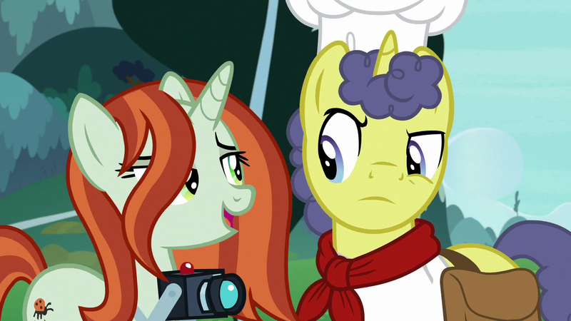 2287700 - bag, camera, crackle cosette, derpibooru import, disguise,  disguised changeling, female, male, mare, pony, queen chrysalis, saddle  bag, safe, screencap, shutterbug, stallion, stove comet, the ending of the  end, unicorn - Twibooru